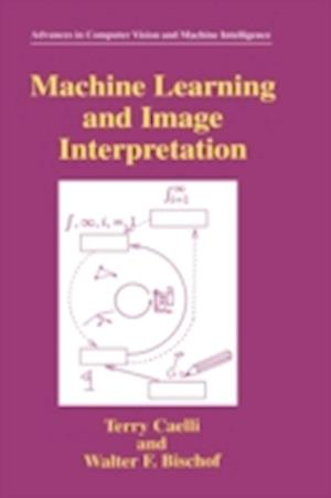 Machine Learning and Image Interpretation