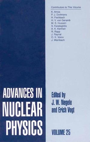Advances in Nuclear Physics : Volume 25