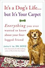 It's a Dog's Life... But It's Your Carpet