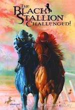 Black Stallion Challenged (Black Stallion)