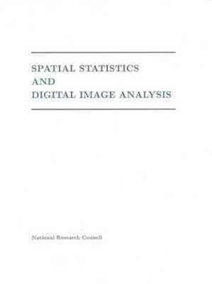 Spatial Statistics and Digital Image Analysis