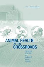 Animal Health at the Crossroads