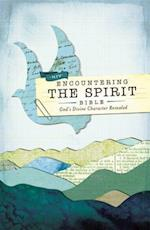 Encountering the Spirit Bible-NIV