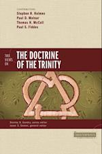 Two Views on the Doctrine of the Trinity af Paul D. Molnar, Stephen R. Holmes, Thomas H. McCall