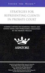 Strategies for Representing Clients in Probate Court (Inside the Minds)