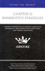Chapter 12 Bankruptcy Strategies (Inside the Minds)