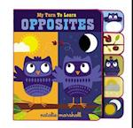 My Turn to Learn Opposites (My Turn to Learn)