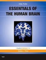 Essentials of the Human Brain