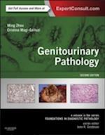 Genitourinary Pathology (Foundations in Diagnostic Pathology)