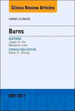 Burns, an Issue of Hand Clinics (The Clinics, Orthopedics, nr. 33)