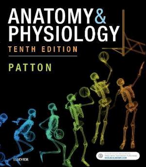 Anatomy & Physiology (includes A&P Online course)