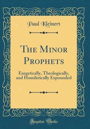 Bog, hardback The Minor Prophets af Paul Kleinert