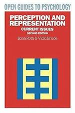 Perception and Representation (Open Guides to Psychology)