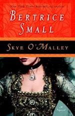 Skye O'Malley af Bertrice Small