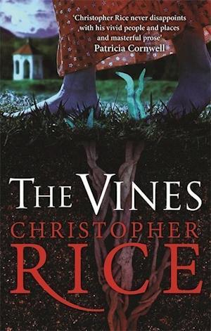 The Vines