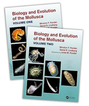 Biology and Evolution of the Mollusca