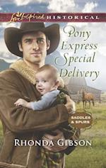 Pony Express Special Delivery (Love Inspired Historical)