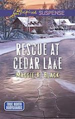 Rescue at Cedar Lake (Love Inspired Suspense)