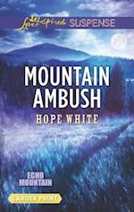 Mountain Ambush (Echo Mountain)