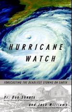 Hurricane Watch (Vintage Original)