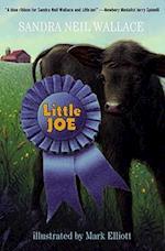 Little Joe af Sandra Neil Wallace, Sandra Neil Wallace