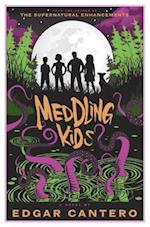 Meddling Kids (A Blyton Summer Detective Club Adventure)