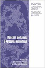 Molecular Mechanisms of Xeroderma Pigmentosum (ADVANCES IN EXPERIMENTAL MEDICINE AND BIOLOGY)