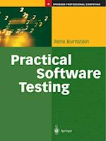 Practical Software Testing (Springer Professional Computing)