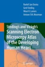 Steding's and Viragh's Scanning Electron Microscopy Atlas of the Developing Human Heart