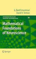 Mathematical Foundations of Neuroscience (INTERDISCIPLINARY APPLIED MATHEMATICS, nr. 35)