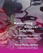 Awakening Clinical Intuition (Norton Series on Interpersonal Neurobiology)