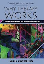 Why Therapy Works (Norton Series on Interpersonal Neurobiology)