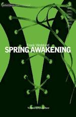 Spring Awakening (Modern Classics)