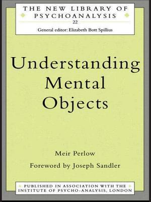 Understanding Mental Objects