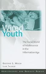 Wired Youth (Adolescence and Society)