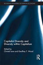 Capitalist Diversity and Diversity within Capitalism af Geoffrey Wood, Christel Lane