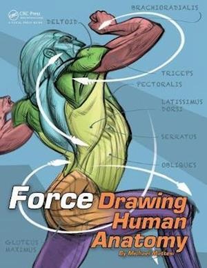 Bog, paperback Force: Drawing Human Anatomy af Mike Mattesi