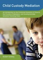 Child Custody Mediation (Dvd Workshop Series on Clinical Child and Adolescent Psychology)