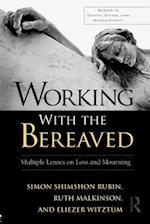 Working with the Bereaved (Series in Death Dying and Bereavement Paperback)
