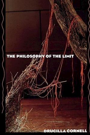 The Philosophy of the Limit