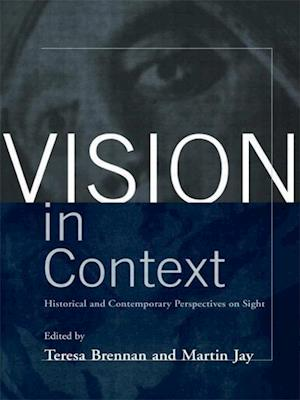 Vision in Context