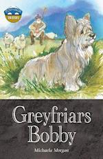 Storyworlds Bridges Stage 12 Greyfriars Bobby (single) (Storyworlds)