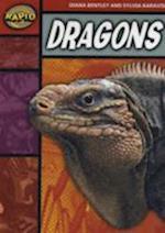 Rapid Stage 2 Set B Reader Pack: Dragons (Series 1)