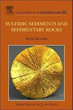 Sulfidic Sediments and Sedimentary Rocks (DEVELOPMENTS IN SEDIMENTOLOGY, nr. 65)