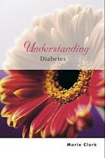 Understanding Diabetes (Understanding Illness & Health)