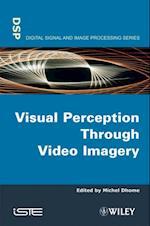 Visual Perception Through Video Imagery (Iste)