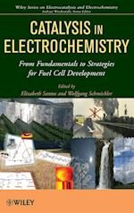 Catalysis in Electrochemistry (Wiley Series on Electrocatalysis and Electrochemistry)