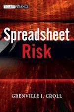 Spreadsheet Risk (Wiley Finance Series)
