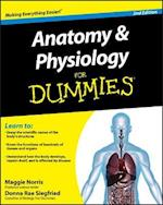 Anatomy & Physiology for Dummies (For dummies)