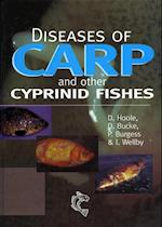 Diseases of Carp and Other Cyprinid Fishes (Fishing News Books)